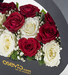 Dolce Vita Red And White Roses